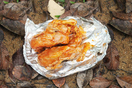 Grill chicken on aluminium foil isolated with ground and leaf background. Stock Photo - 11079857