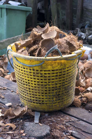 Coconut shell in yellow bucket. Isolated wood background.
