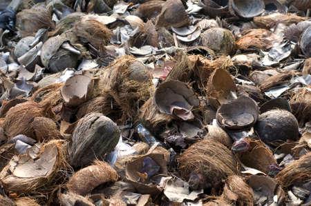 husks: Coconut shell waste in full frame.