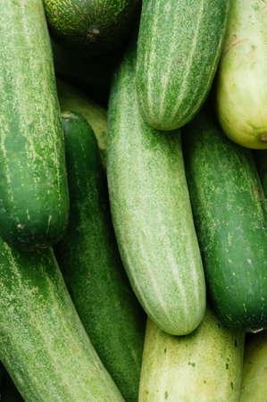 Close up cucumber in nice pattern