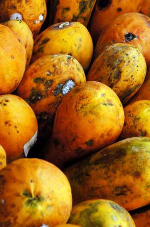papaya tree: Rotten papaya is saparate with others.  Stock Photo