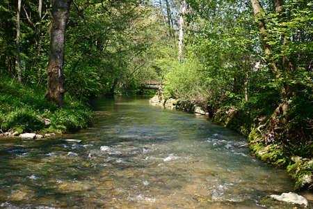 cours d eau: L'eau transparente, avec de belles GREE arri�re-plan.
