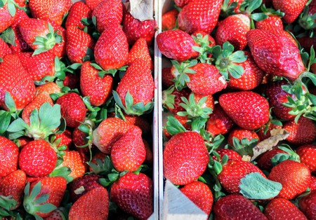 Small card board boxes with tasty red strawberries 写真素材