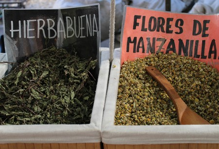 Various infusions of beneficial medicinal plants for health 写真素材