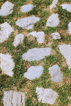 Image for backgrounds and texture of stone and cement in grey tones and grass 写真素材