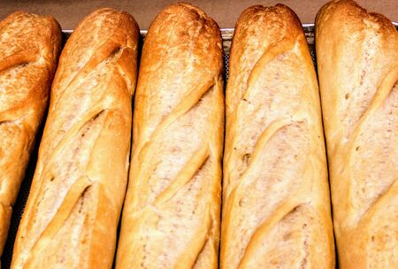 Freshly baked loaves of bread with a nice golden color 写真素材