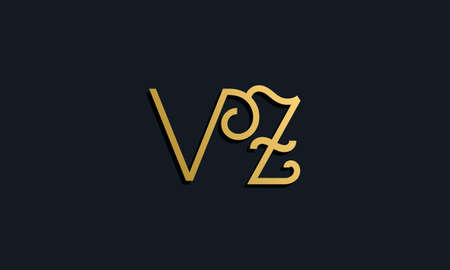 Luxury fashion initial letter VZ. This icon incorporate with modern typeface in the creative way. It will be suitable for which company or brand name start those initial. Vektoros illusztráció