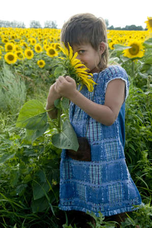 smells: The girl smells a sunflower. She is situated on the field of sunflowers.