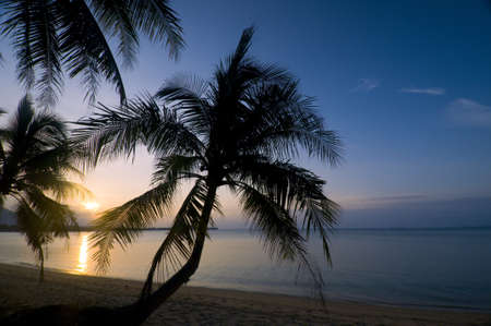 Such sunset sometimes you can see in Thailand. This is wonderful combination: sea, beach and palms. photo