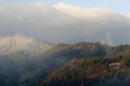 Una tormenta de nieve a principios de otoño se levanta sobre las montañas de los Cárpatos, Ucrania, dejando a un glaseado dulce en los alrededores. El sol se asomó a través de revelado y mate bosque en las montañas.