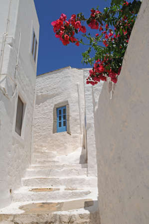 Such white houses with bright flowers and lanes are characteristic for Greece  These buildings are situated in the  Patmos  - a small Greek island in the Aegean Sea  photo