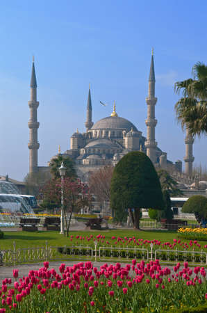 prayer tower: Hagia Sophia is a former Orthodox patriarchal basilica, later a mosque, and now a museum in Istanbul  Bright flowers are in the foreground  Stock Photo