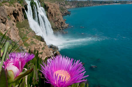 This is a view of  Lara waterfall (the end of Dudan river, Antalya, Turkey). Bright violet flowers are in the foreground. Stock Photo - 27575954