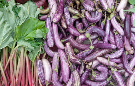 rheum: Eggplants and pieplants (Rheum) is layed out for sell.