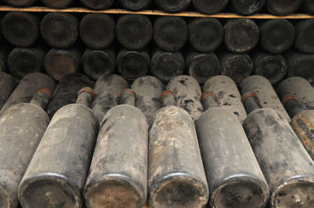 This is a wine storage. Old wine bottles covered with dust are set in rowes. Stock Photo