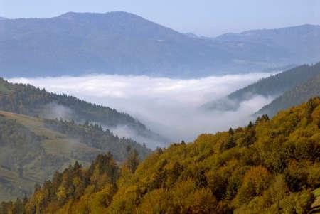 streifzug: Gold autumn in the mountains. White mist ramble through the mountains. Yellow trees are in the foreground. Lizenzfreie Bilder
