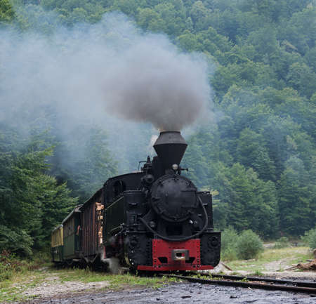 woodburning: Running wood-burning locomotive of Mocanita Maramures, Romania. Old train is situated against green forest background. Stock Photo