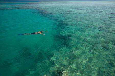 snorkelling: Vacations near the sea: snorkelling.