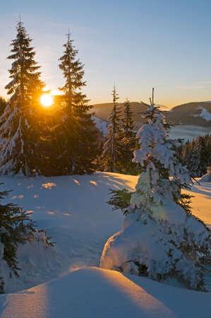 penetrate: Snowy mountains. Sunbeams penetrate woodland and illuminate snow surface. Stock Photo