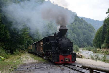 woodburning: Running wood-burning locomotive of Mocanita Maramures, Romania. Green forest is in background. Stock Photo