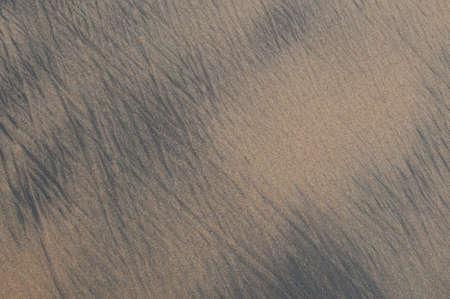 heterogeneous: Wet sand near ocean edge.