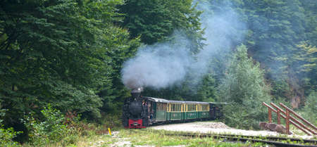woodburning: Running wood-burning locomotive of Mocanita Maramures, Romania. Old train is situated against green forest background. Editorial