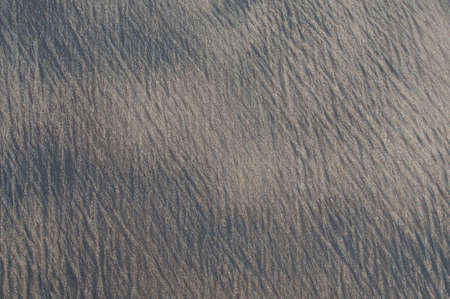stippled: Multicolored sand background.