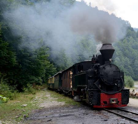 woodburning: Running wood-burning locomotive against green forest background.