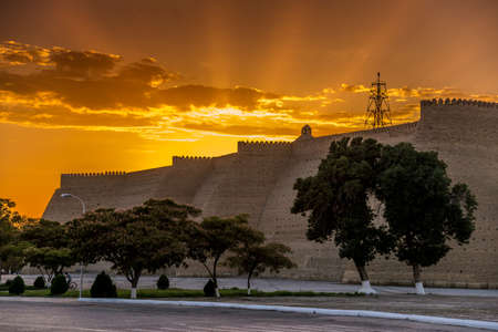 Massive Ark fortress (Bukhara, Uzbekistan) against beautiful sunset background. Green and  blossom trees in foreground.