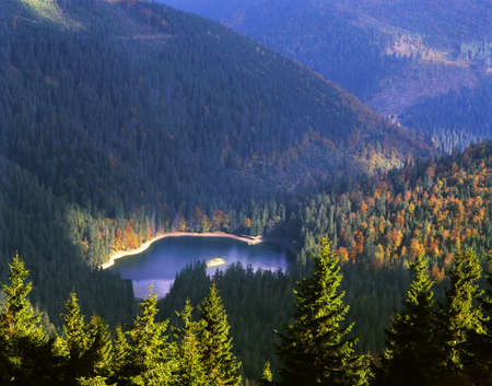 Top view of Synevyr Lake in autumn season. Blue lake is surrounded with yellow, orange and green trees. Sunlit fir-trees in foreground. Stock Photo