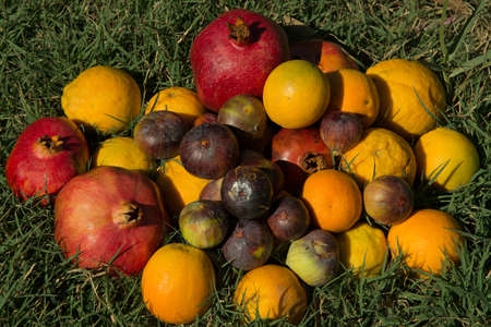 Pomegranate, orange, lemon and fig against green grass background.