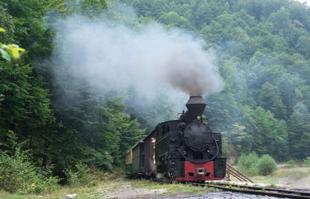 woodburning: Running wood-burning locomotive of Mocanita (Maramures, Romania). Old train is situated against green forest background.
