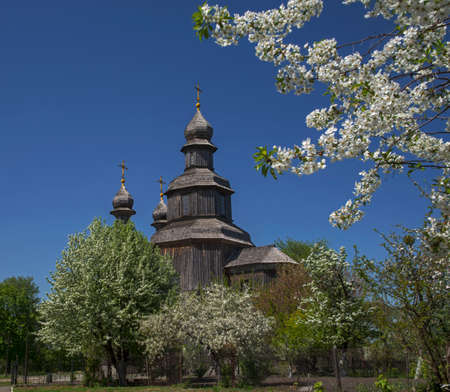 Wood church (Saint Georges) surrounded with blossom trees. Place - Sedniv, Ukraine.