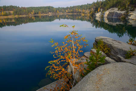 Small painted tree in autumn against a large blue lake. Banco de Imagens