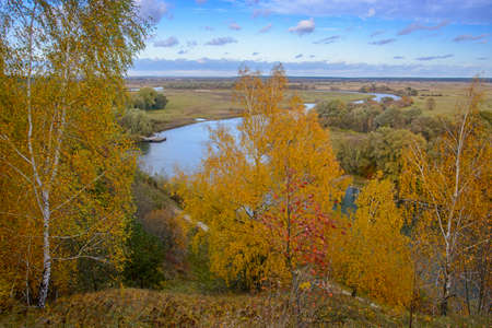 Golden birch in foreground. Blue river, sky and meadows in background.
