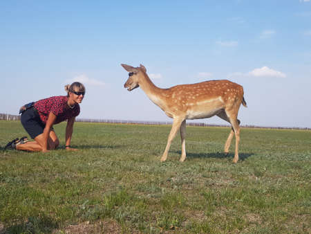 Girl sits on a green lawn, next to a deer. They look at each other. Askania-Nova - safari. Stock Photo - 162058435
