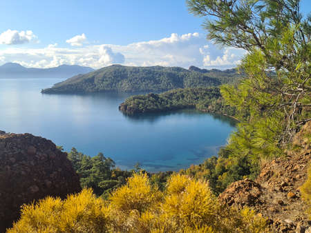 Sea is framed by green shores. Yellow bush in foreground. Datca Peninsula