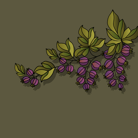 berry: decorative currant berry background