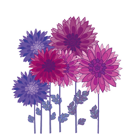 chrysanthemum flower element. autumn aster floral decorative illustration. fall decorative blossom Illustration