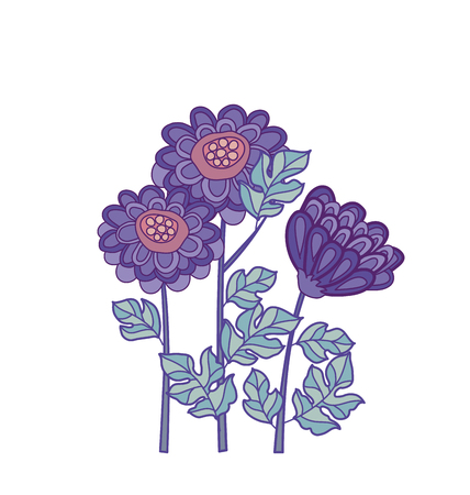 chrysanthemum flower card template design.  aster floral decorative illustration. fall blossom in violet colors motif. autumn flowers rustic peasant style element