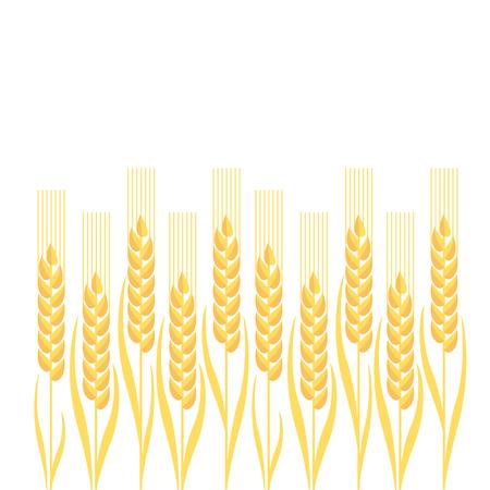 nuvo: gold wheat illustration ion white background Illustration