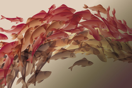 flocks: illustration of koi fish in natural elegant color