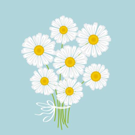 weiße Kamille Blumenstrauß Vektor-Illustration