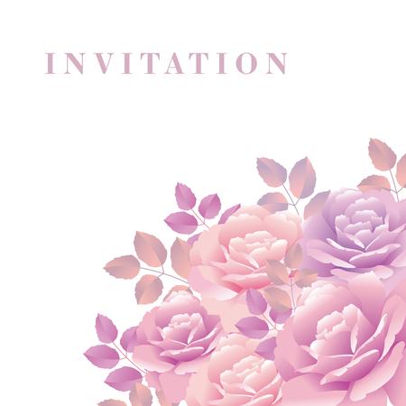 bouquet of rose vector illustration Illustration