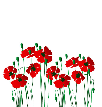 poppy flower concept vector illustration Illustration
