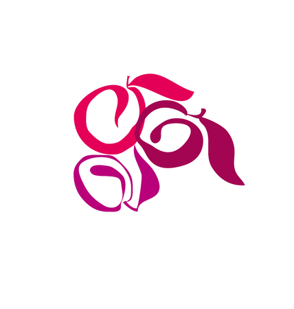 vermeil: plum fruit simple decorative symbol. vector illustration