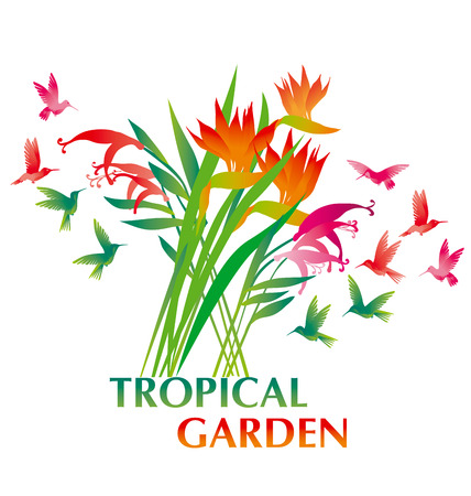 tropical exotic decorative flower bunch and  paradise birds. vector illustration. Illustration