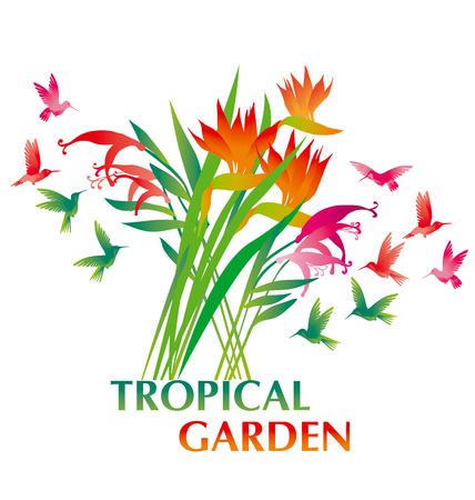 tropical exotic decorative flower bunch and  paradise birds. vector illustration. Illusztráció