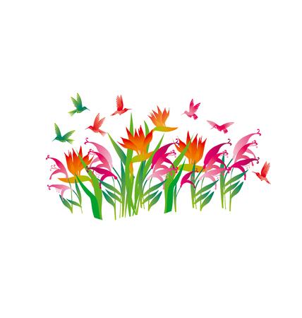 tropical exotic decorative flowers and color little birds. vector illustration. Illusztráció