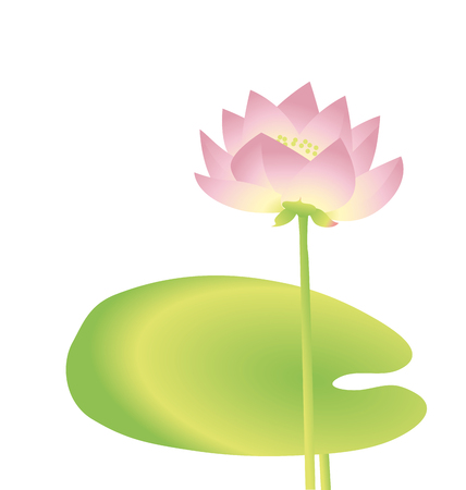 single  lotus decorative floral element. vector illustration